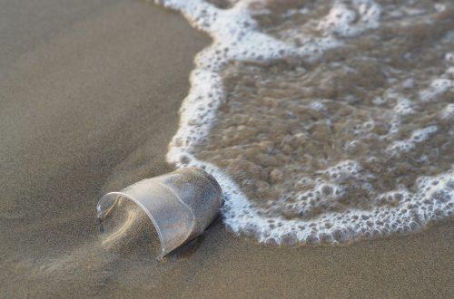 Vivre sans plastique